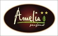 Pensjonat Amelia