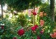 Noclegi Karnice - Pensjonat Pod Różą