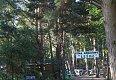 noclegi  Karwieńskie Błota - Pole Namiotowe Leśne