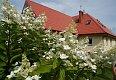 Noclegi Białogóra - Kwatery Prywatne Prezydencja