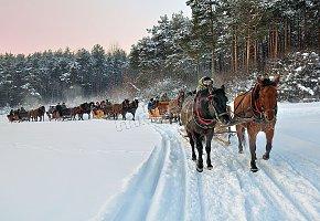 Kuligi konne zimą, biesiady , ogniska...