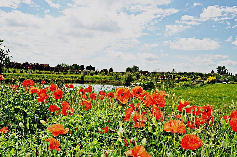 Agroturystyka Czereśniowy Zakątek