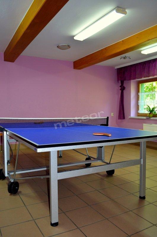 stół do ping-ponga