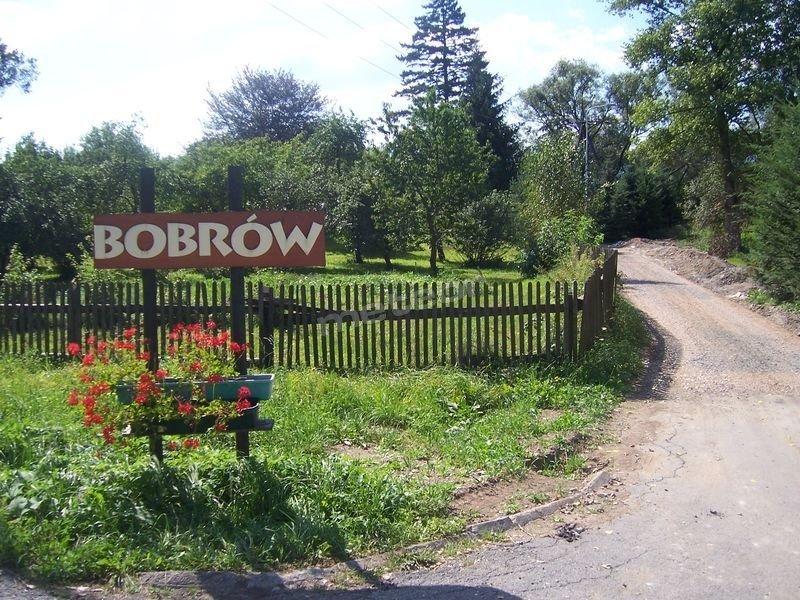 Karpnicka Struga W Dolinie Pałaców i Ogrodów