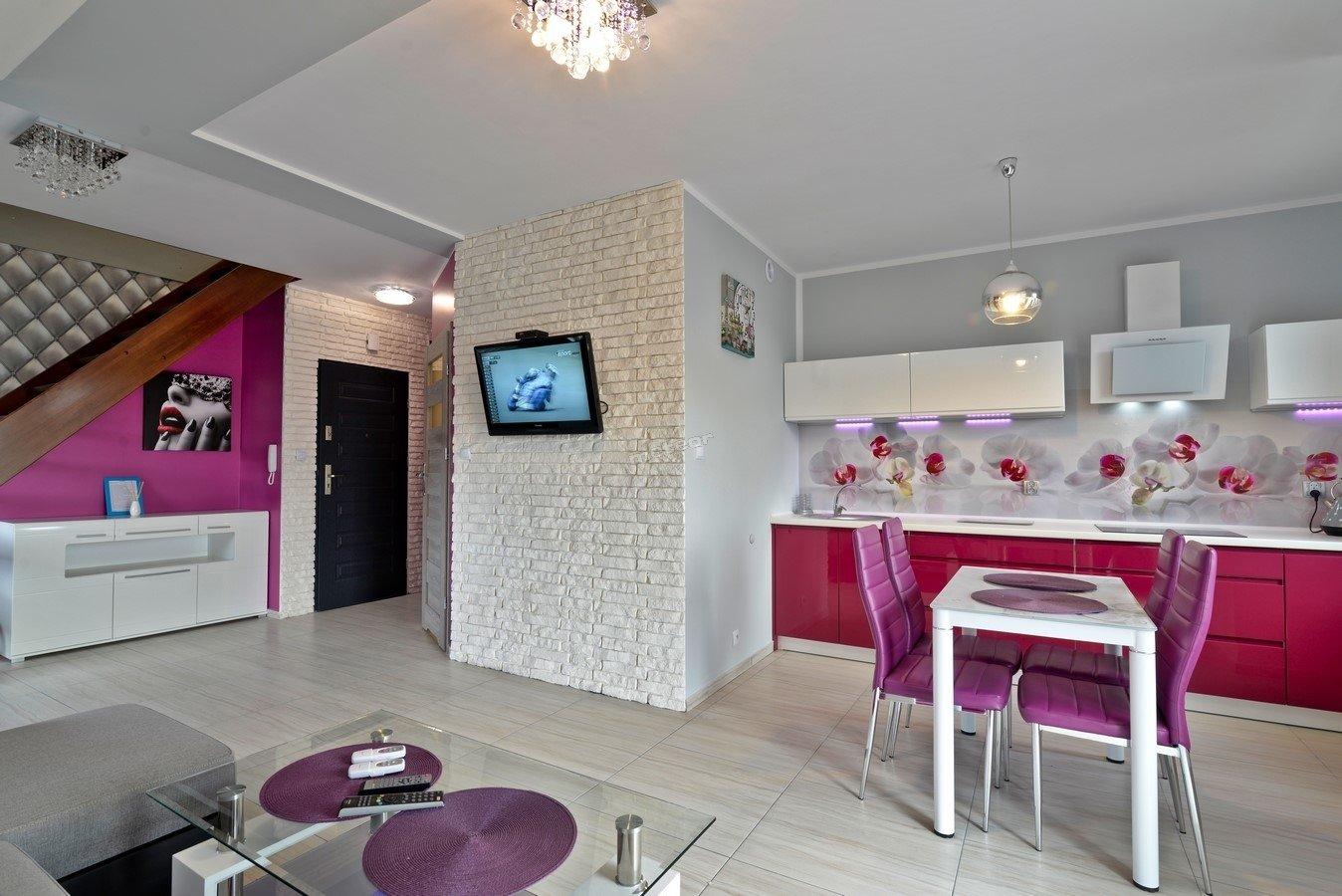 Apartament Tomek III + klimatyzacja + widok na wode - pionow