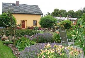 Dom, ogród wewnętrzny, fragment tarasu Apartamentu