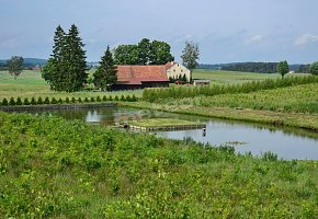 Agroturystyka Pensjonat Pod Lasem
