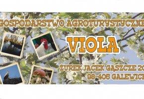 Agroturystyka Viola