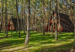 Osada Swory Domki w Lesie