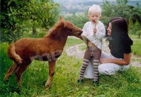 Agroturystyka - Pokoje Gościnne Leśniakówka