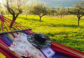 Relaks na hamaku z ulubioną książką i pięknymi widokami .